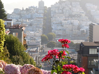The top of Lombard Street . . .